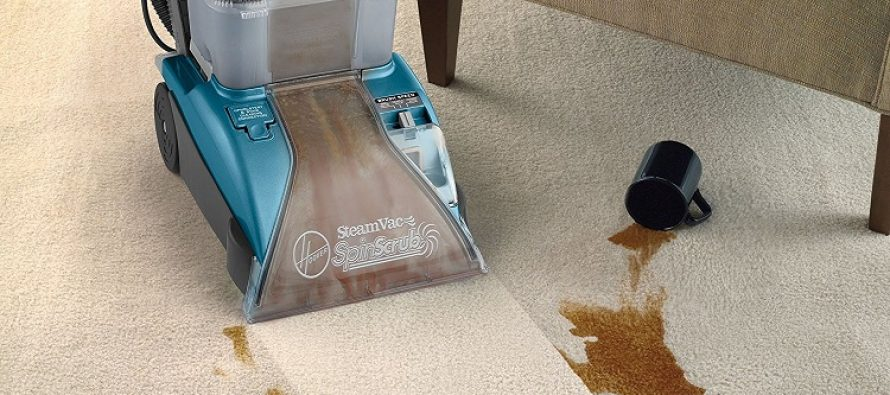 Can a Steam Carpet Cleaner Take the Place of Vacuum Cleaner for General Household Cleaning